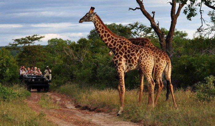 Schueler-Sprachreisen Suedafrika