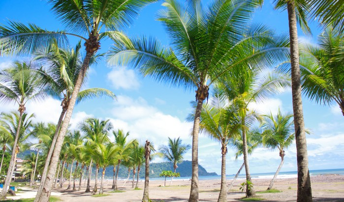 Sprachreisen Jaco Beach